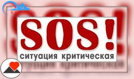Что сделали плохого волонтеры города Донецка?